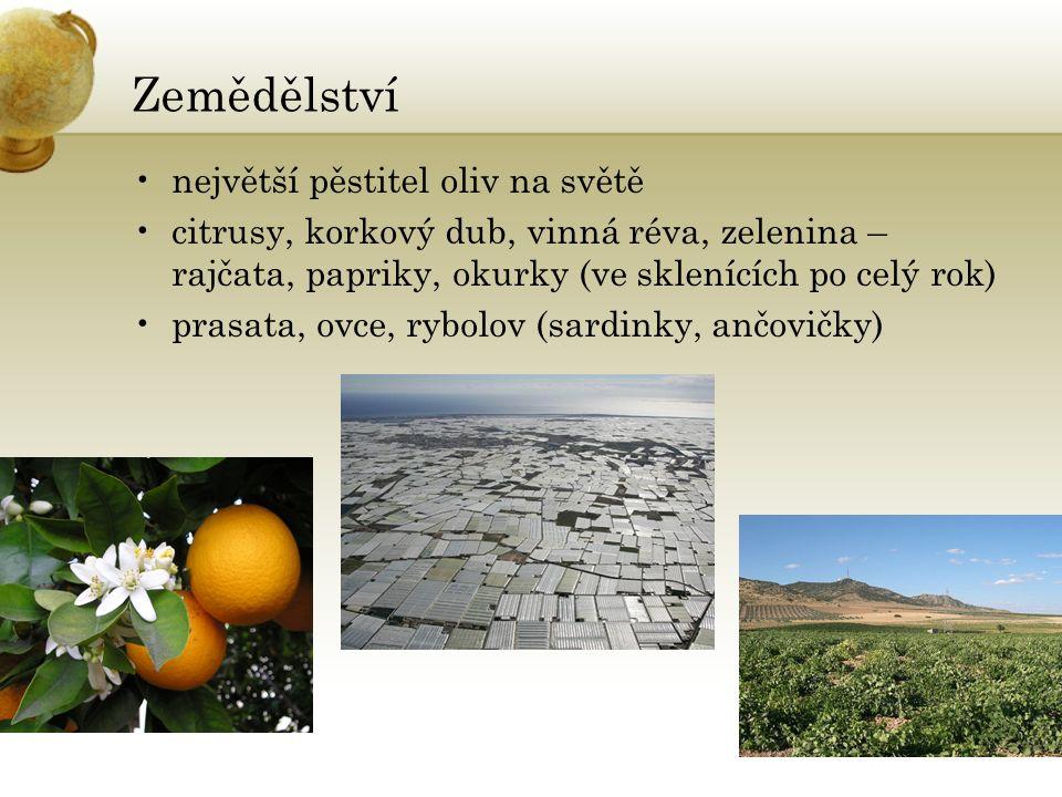 Zemědělství největší pěstitel oliv na světě citrusy, korkový dub, vinná réva, zelenina – rajčata, papriky, okurky (ve sklenících po celý rok) prasata, ovce, rybolov (sardinky, ančovičky)