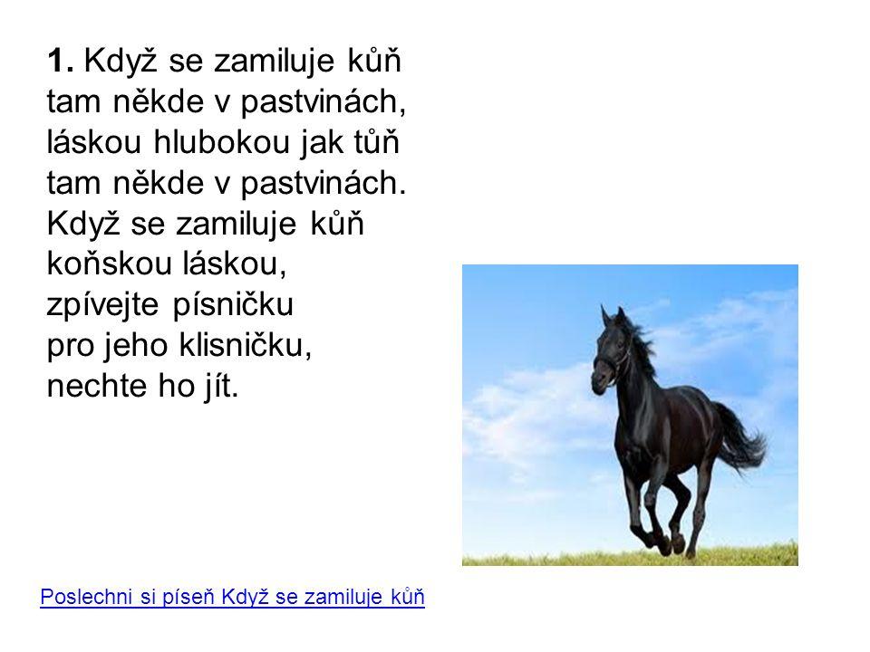 1. Když se zamiluje kůň tam někde v pastvinách, láskou hlubokou jak tůň tam někde v pastvinách. Když se zamiluje kůň koňskou láskou, zpívejte písničku