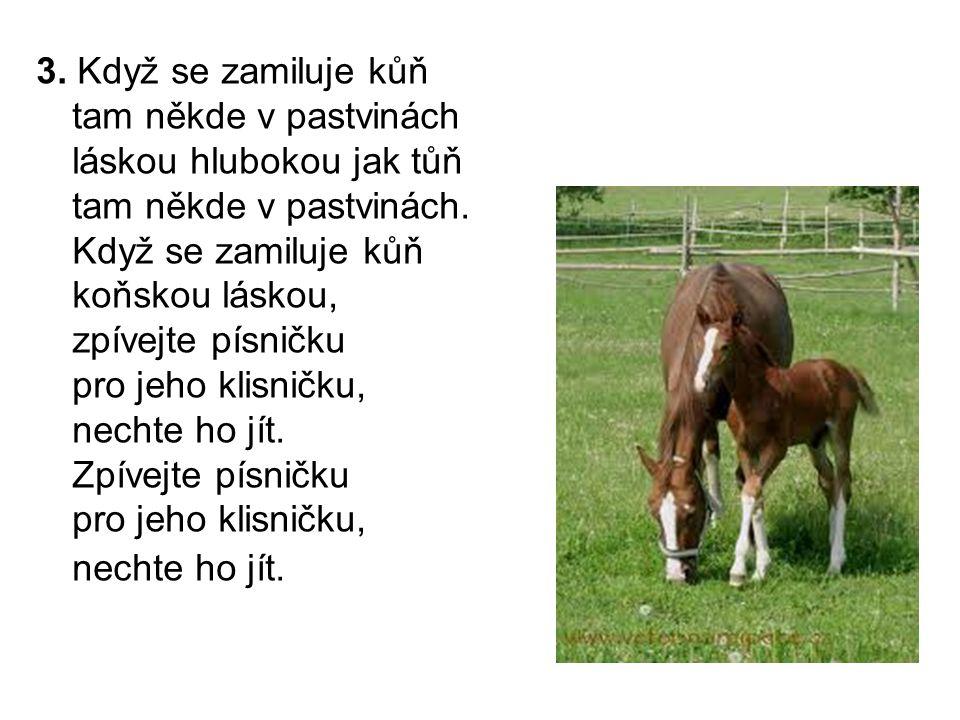 3. Když se zamiluje kůň tam někde v pastvinách láskou hlubokou jak tůň tam někde v pastvinách. Když se zamiluje kůň koňskou láskou, zpívejte písničku