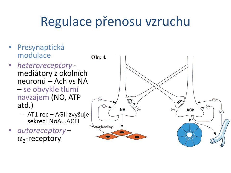 Regulace přenosu vzruchu Presynaptická modulace heteroreceptory - mediátory z okolních neuronů – Ach vs NA – se obvykle tlumí navzájem (NO, ATP atd.)
