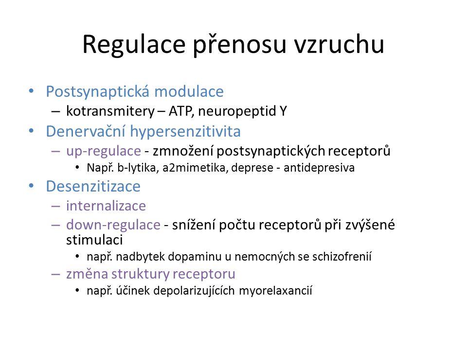 Regulace přenosu vzruchu Postsynaptická modulace – kotransmitery – ATP, neuropeptid Y Denervační hypersenzitivita – up-regulace - zmnožení postsynapti