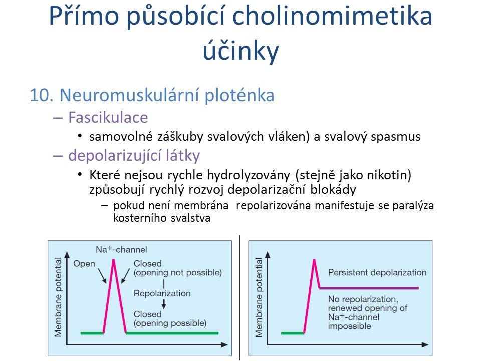 10. Neuromuskulární ploténka – Fascikulace samovolné záškuby svalových vláken) a svalový spasmus – depolarizující látky Které nejsou rychle hydrolyzov