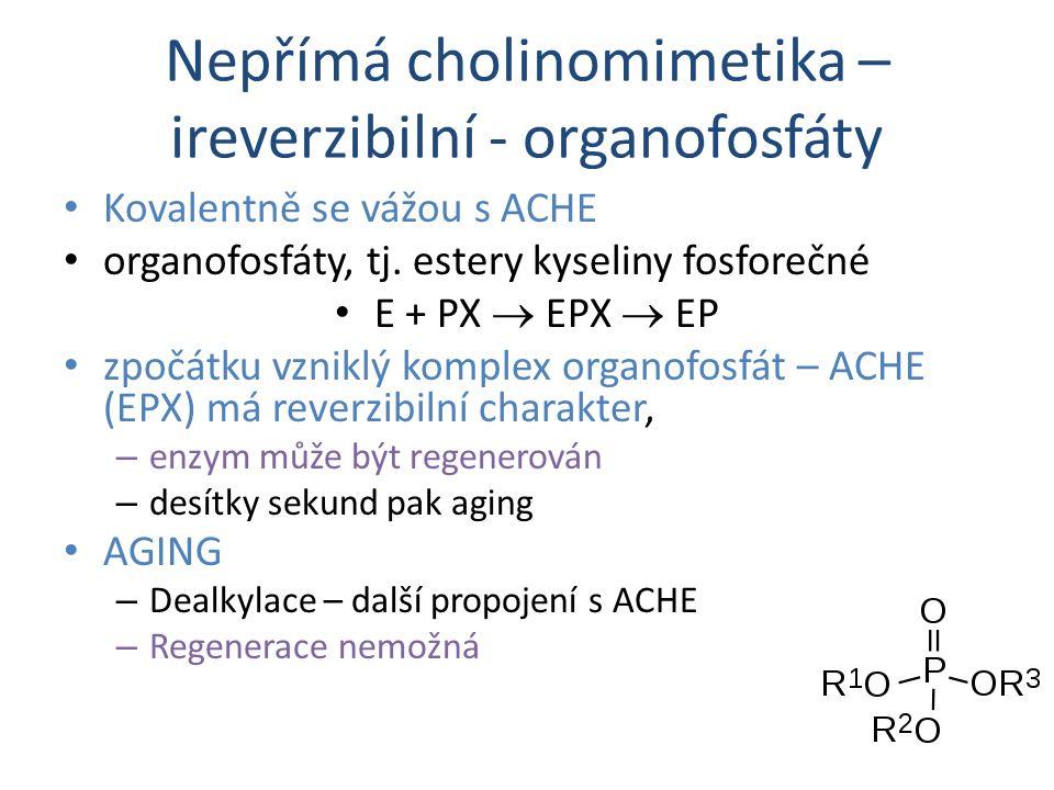 Nepřímá cholinomimetika – ireverzibilní - organofosfáty Kovalentně se vážou s ACHE organofosfáty, tj. estery kyseliny fosforečné E + PX  EPX  EP zpo