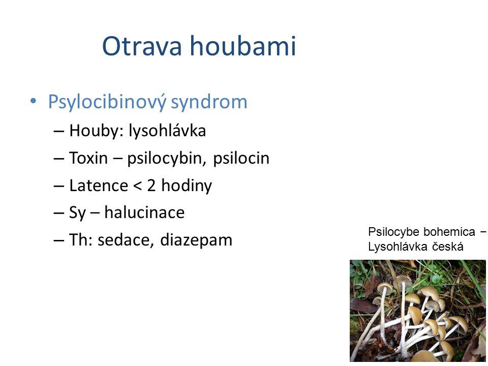 Otrava houbami Psylocibinový syndrom – Houby: lysohlávka – Toxin – psilocybin, psilocin – Latence < 2 hodiny – Sy – halucinace – Th: sedace, diazepam Psilocybe bohemica − Lysohlávka česká