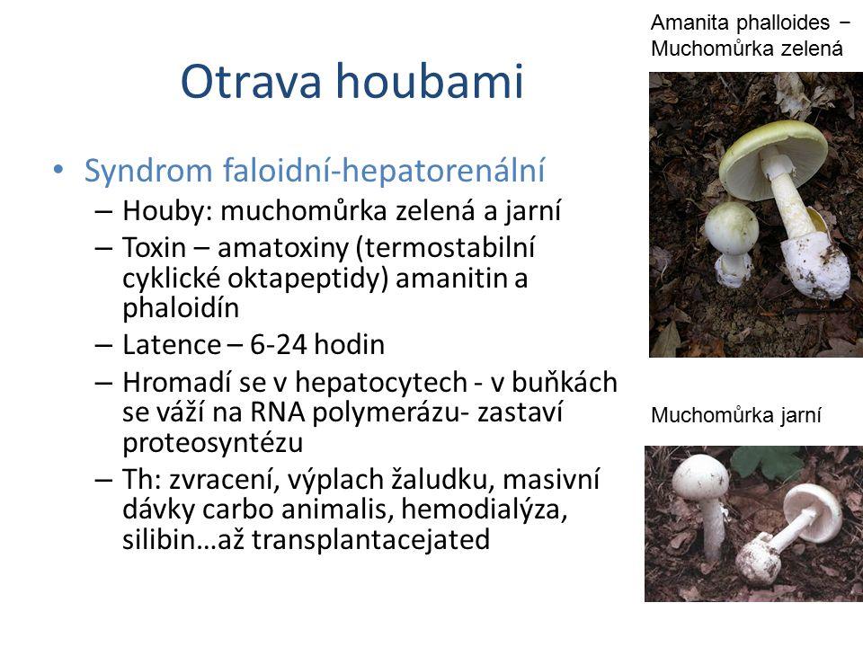 Otrava houbami Syndrom faloidní-hepatorenální – Houby: muchomůrka zelená a jarní – Toxin – amatoxiny (termostabilní cyklické oktapeptidy) amanitin a p