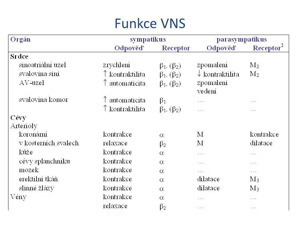M-účinky Kardiotropní vliv cholinomimetik závisí na rovnováze mezi účinkem zprostředkovaným M receptory (bradykardie) a reflexem zprostředkovaným baroreceptory (tachykardie) reagujícími na pokles TK.