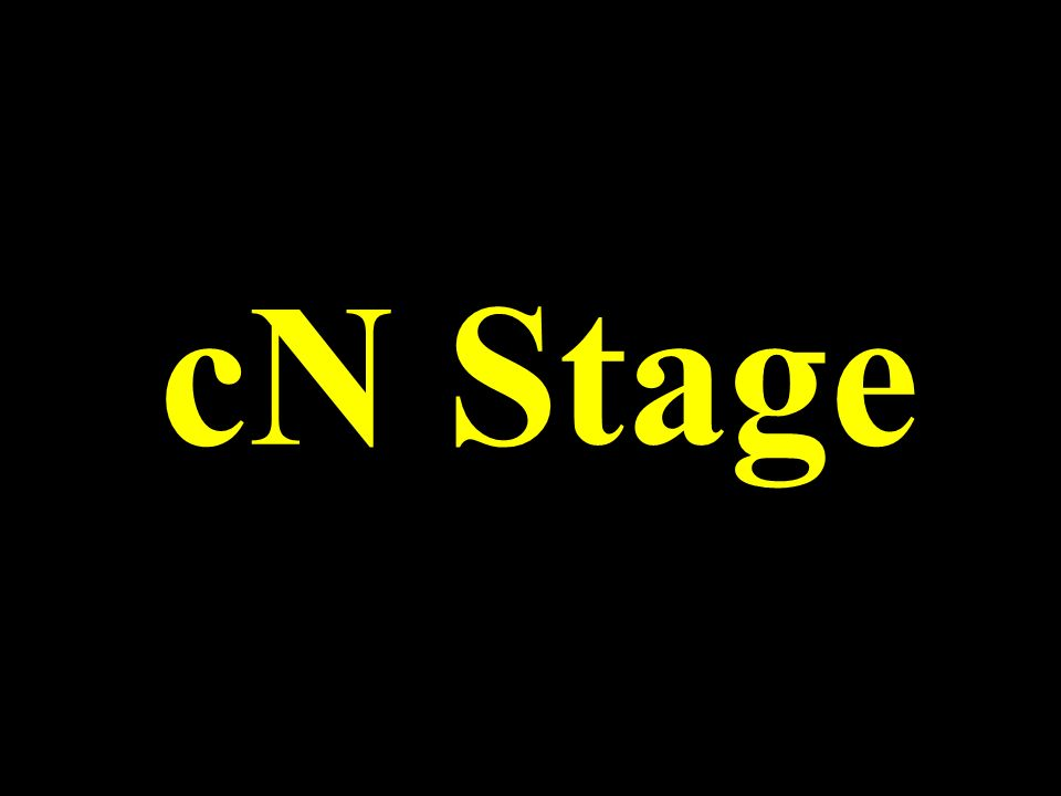 cN Stage