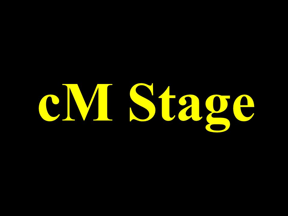 cM Stage