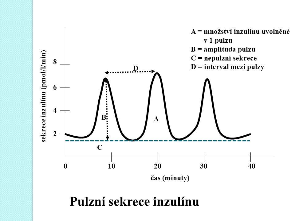 A = množství inzulínu uvolněné v 1 pulzu B = amplituda pulzu C = nepulzní sekrece D = interval mezi pulzy 0 10 20 30 40 čas (minuty) 8 6 4 2 sekrece inzulínu (pmol/l/min) C B A D Pulzní sekrece inzulínu