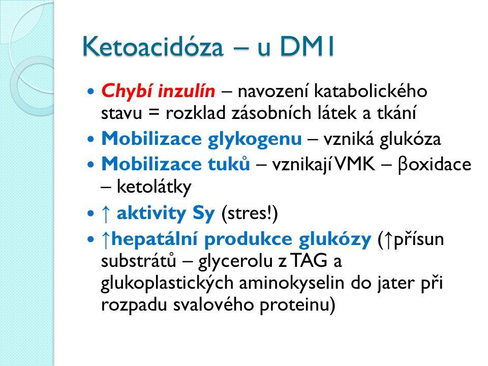 Ketoacidóza – u DM1 Chybí inzulín – navození katabolického stavu = rozklad zásobních látek a tkání Mobilizace glykogenu – vzniká glukóza Mobilizace tu