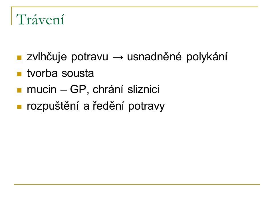 Trávící enzymy α-amyláza (α-1,4-glukosidasa, ptyalin) hydrolyzuje škrob a glykogen koncovým produktem je maltosa neštěpí α-1,6-glykosidové vazby, β-glykosidové vazby (→ celulosu ne) působí krátce – po promíchání se žaludeční šťávou se inaktivuje hydrolýza není nezbytná, (pes, kočka, malé děti) nemají aktivní amylázu jazyková lipáza