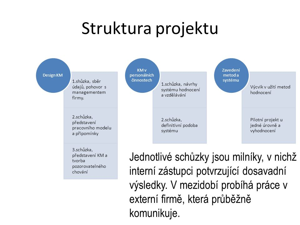 Struktura projektu 1.shůzka, sběr údajů, pohovor s managementem firmy.