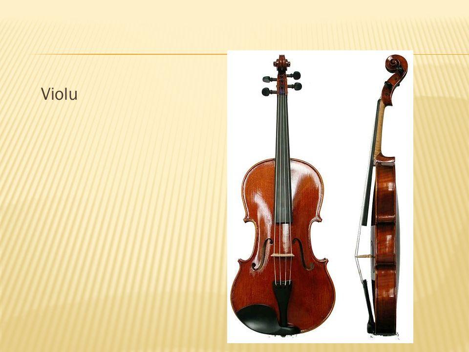 Violu