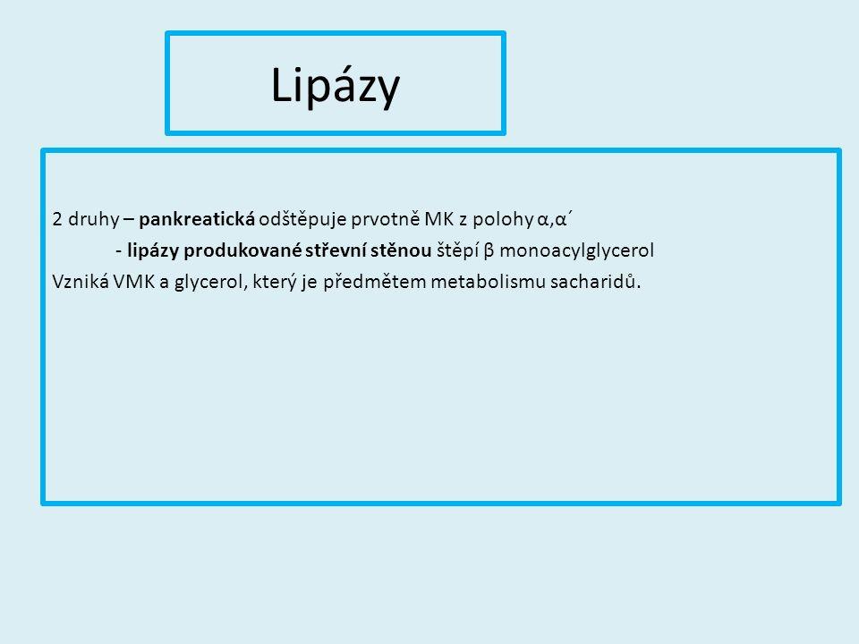 Lipázy 2 druhy – pankreatická odštěpuje prvotně MK z polohy α,α´ - lipázy produkované střevní stěnou štěpí β monoacylglycerol Vzniká VMK a glycerol, který je předmětem metabolismu sacharidů.