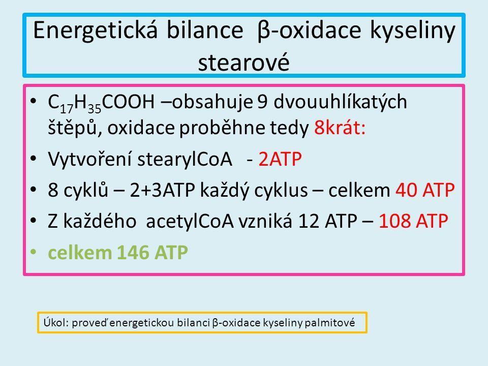 Energetická bilance β-oxidace kyseliny stearové C 17 H 35 COOH –obsahuje 9 dvouuhlíkatých štěpů, oxidace proběhne tedy 8krát: Vytvoření stearylCoA - 2ATP 8 cyklů – 2+3ATP každý cyklus – celkem 40 ATP Z každého acetylCoA vzniká 12 ATP – 108 ATP celkem 146 ATP Úkol: proveď energetickou bilanci β-oxidace kyseliny palmitové