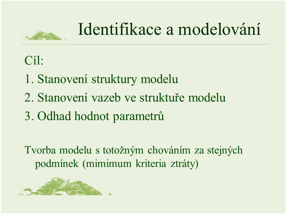 Identifikace a modelování Cíl: 1. Stanovení struktury modelu 2. Stanovení vazeb ve struktuře modelu 3. Odhad hodnot parametrů Tvorba modelu s totožným