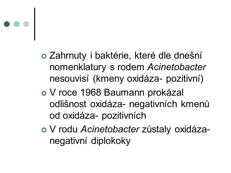 Zahrnuty i baktérie, které dle dnešní nomenklatury s rodem Acinetobacter nesouvisí (kmeny oxidáza- pozitivní) V roce 1968 Baumann prokázal odlišnost oxidáza- negativních kmenů od oxidáza- pozitivních V rodu Acinetobacter zůstaly oxidáza- negativní diplokoky