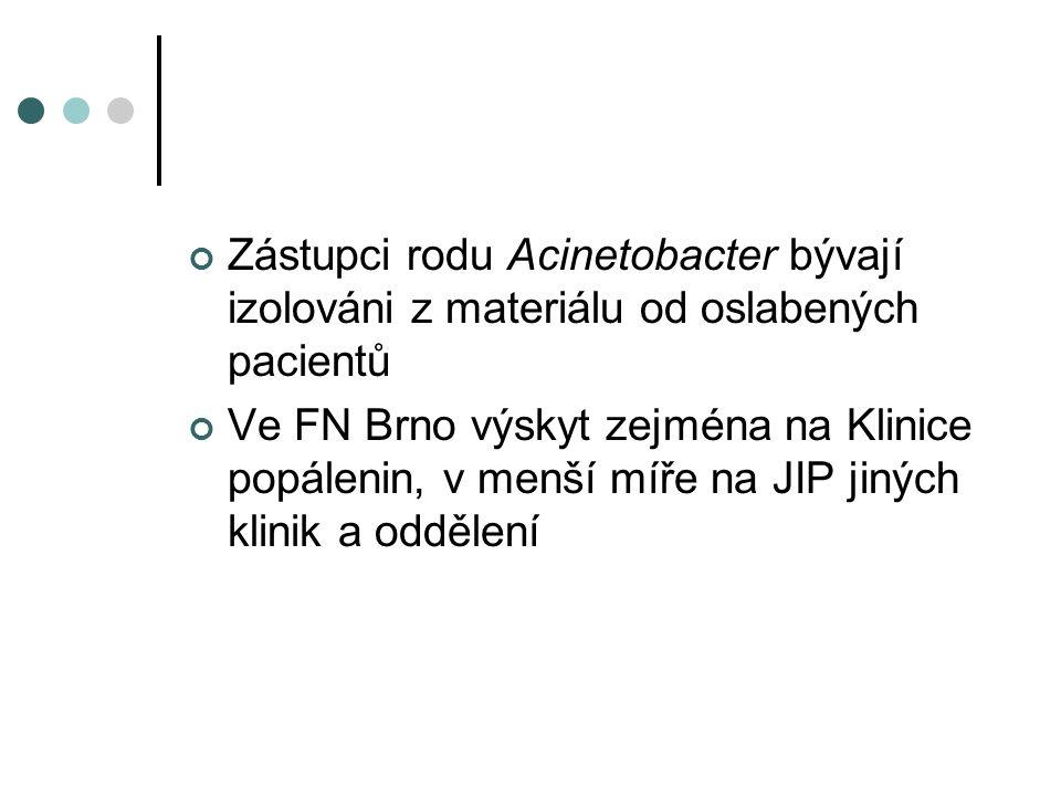 Zástupci rodu Acinetobacter bývají izolováni z materiálu od oslabených pacientů Ve FN Brno výskyt zejména na Klinice popálenin, v menší míře na JIP jiných klinik a oddělení