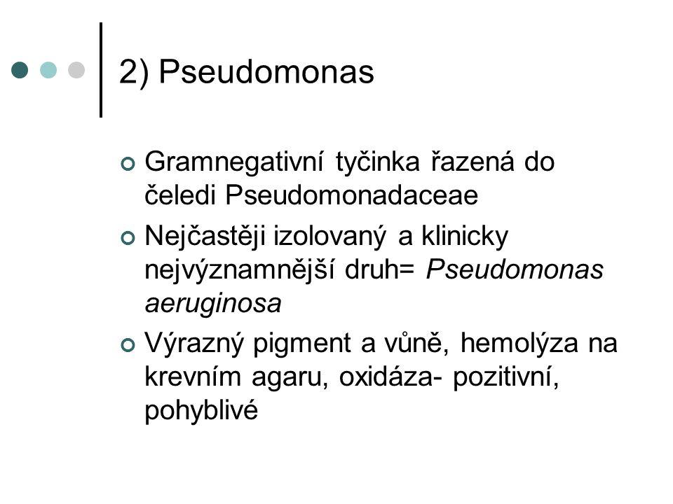 2) Pseudomonas Gramnegativní tyčinka řazená do čeledi Pseudomonadaceae Nejčastěji izolovaný a klinicky nejvýznamnější druh= Pseudomonas aeruginosa Výrazný pigment a vůně, hemolýza na krevním agaru, oxidáza- pozitivní, pohyblivé