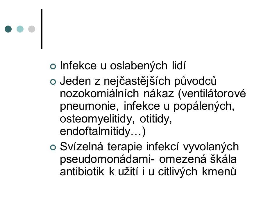 Infekce u oslabených lidí Jeden z nejčastějších původců nozokomiálních nákaz (ventilátorové pneumonie, infekce u popálených, osteomyelitidy, otitidy, endoftalmitidy…) Svízelná terapie infekcí vyvolaných pseudomonádami- omezená škála antibiotik k užití i u citlivých kmenů