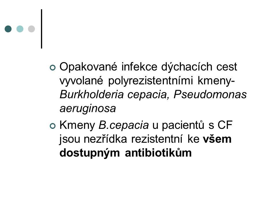 Opakované infekce dýchacích cest vyvolané polyrezistentními kmeny- Burkholderia cepacia, Pseudomonas aeruginosa Kmeny B.cepacia u pacientů s CF jsou nezřídka rezistentní ke všem dostupným antibiotikům