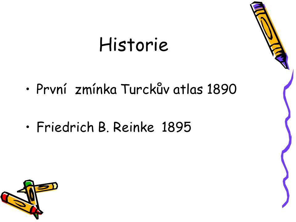 Historie První zmínka Turckův atlas 1890 Friedrich B. Reinke 1895