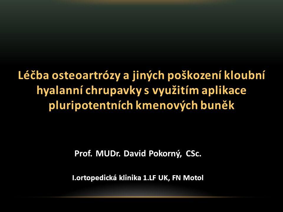 Prof. MUDr. David Pokorný, CSc.