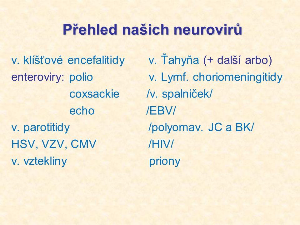 Přehled našich neurovirů Přehled našich neurovirů v.