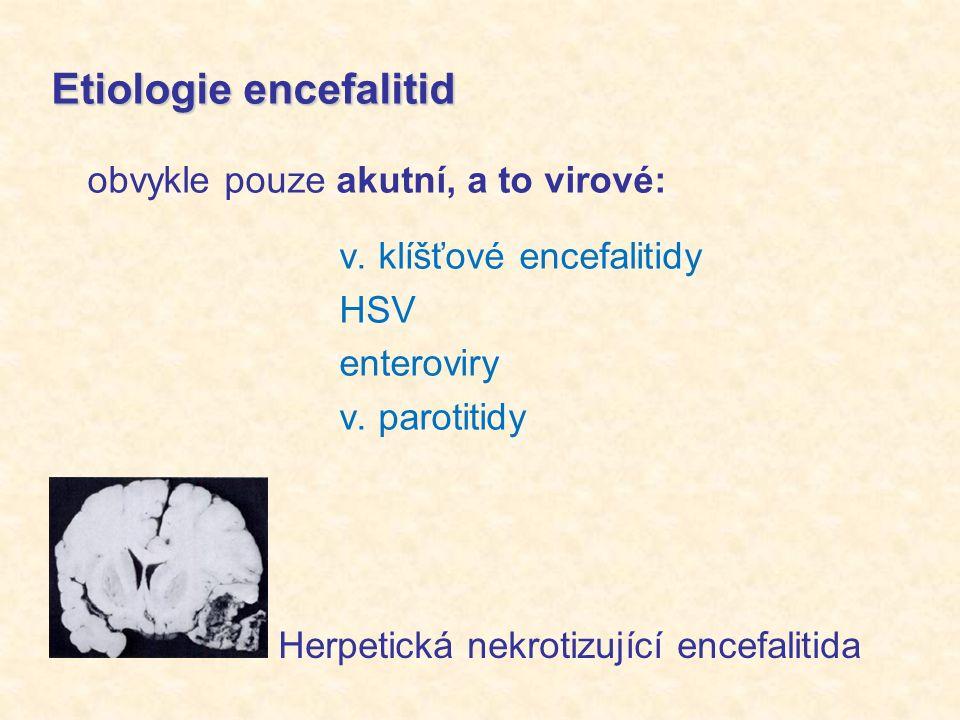 Etiologie encefalitid obvykle pouze akutní, a to virové: v.