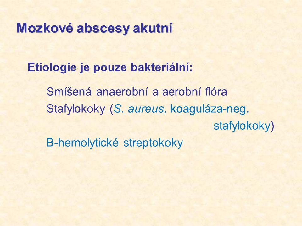 Mozkové abscesy akutní Etiologie je pouze bakteriální: Smíšená anaerobní a aerobní flóra Stafylokoky (S.