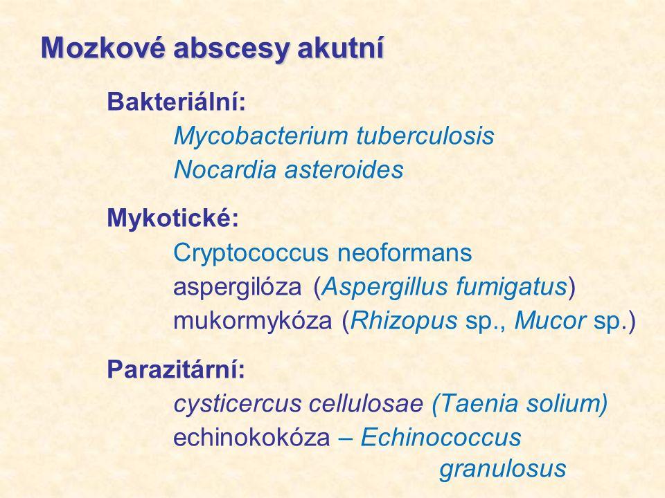 Mozkové abscesy akutní Bakteriální: Mycobacterium tuberculosis Nocardia asteroides Mykotické: Cryptococcus neoformans aspergilóza (Aspergillus fumigatus) mukormykóza (Rhizopus sp., Mucor sp.) Parazitární: cysticercus cellulosae (Taenia solium) echinokokóza – Echinococcus granulosus