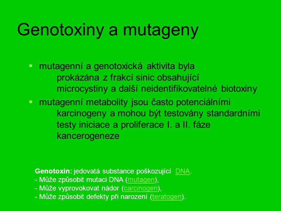 Genotoxiny a mutageny   mutagenní a genotoxická aktivita byla prokázána z frakcí sinic obsahující microcystiny a dalšíneidentifikovatelné biotoxiny   mutagenní metabolity jsou často potenciálními karcinogeny a mohou být testovány standardními testy iniciace a proliferace I.