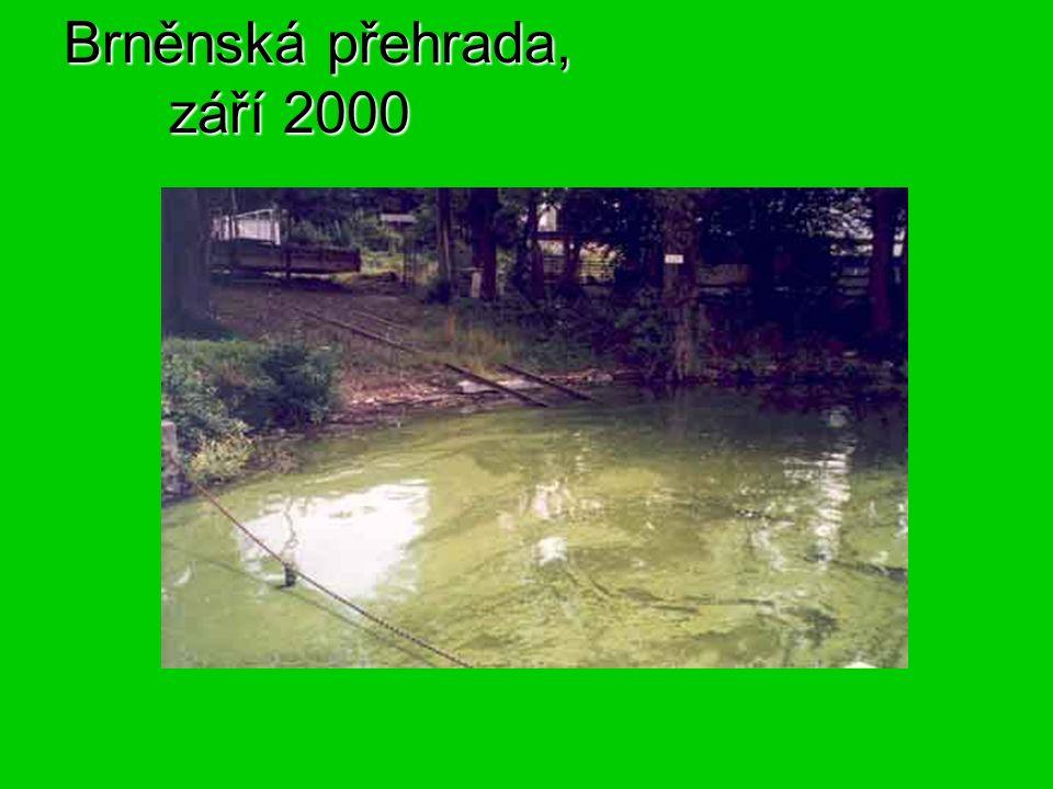 Brněnská přehrada, září 2000
