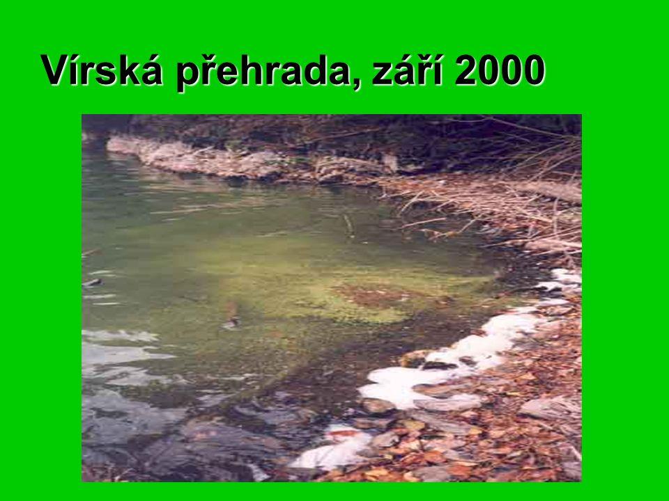 Vírská přehrada, září 2000