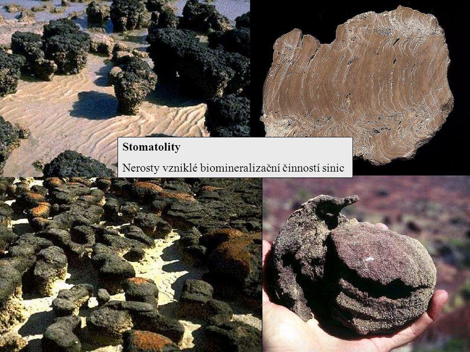 Stomatolity Nerosty vzniklé biomineralizační činností sinic