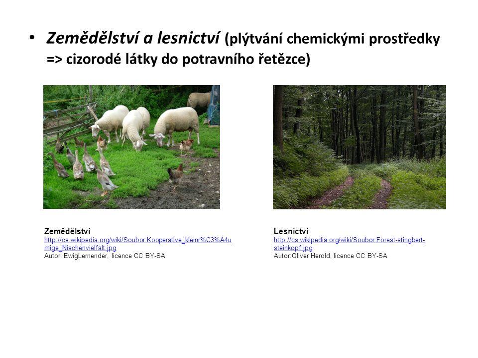 Zemědělství a lesnictví (plýtvání chemickými prostředky => cizorodé látky do potravního řetězce) Zemědělství http://cs.wikipedia.org/wiki/Soubor:Kooperative_kleinr%C3%A4u mige_Nischenvielfalt.jpg Autor: EwigLernender, licence CC BY-SA Lesnictví http://cs.wikipedia.org/wiki/Soubor:Forest-stingbert- steinkopf.jpg Autor:Oliver Herold, licence CC BY-SA