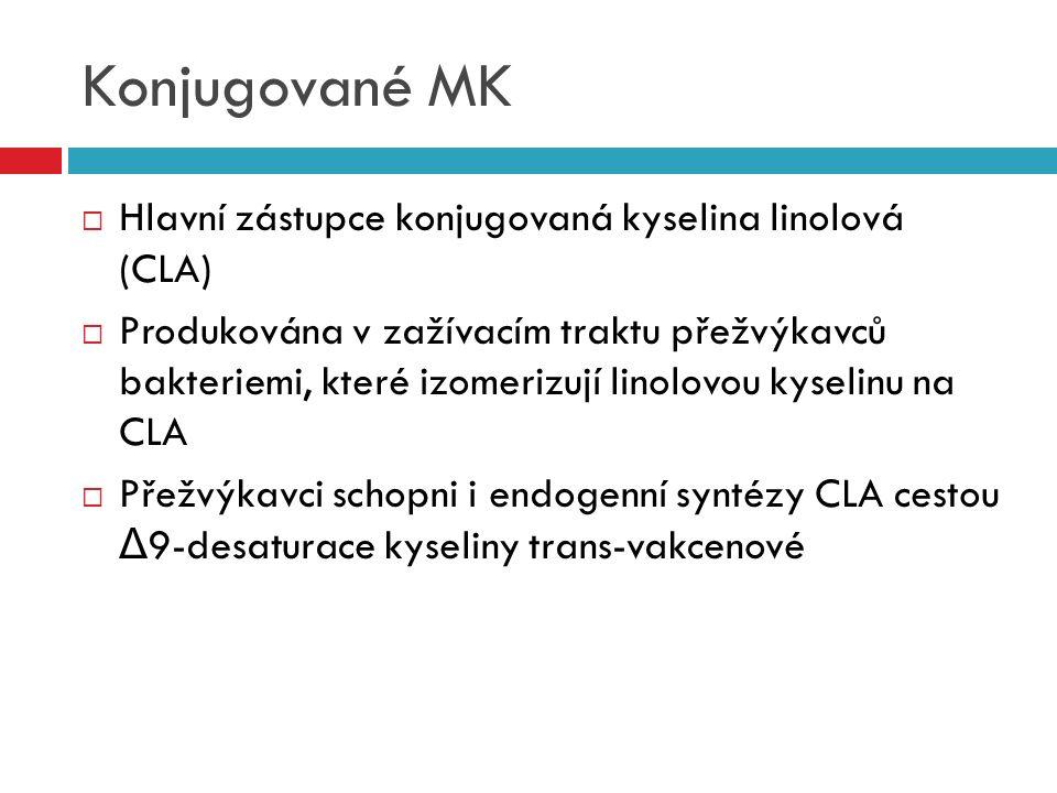 Konjugované MK  Hlavní zástupce konjugovaná kyselina linolová (CLA)  Produkována v zažívacím traktu přežvýkavců bakteriemi, které izomerizují linolo