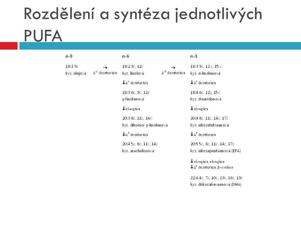 Rozdělení a syntéza jednotlivých PUFA