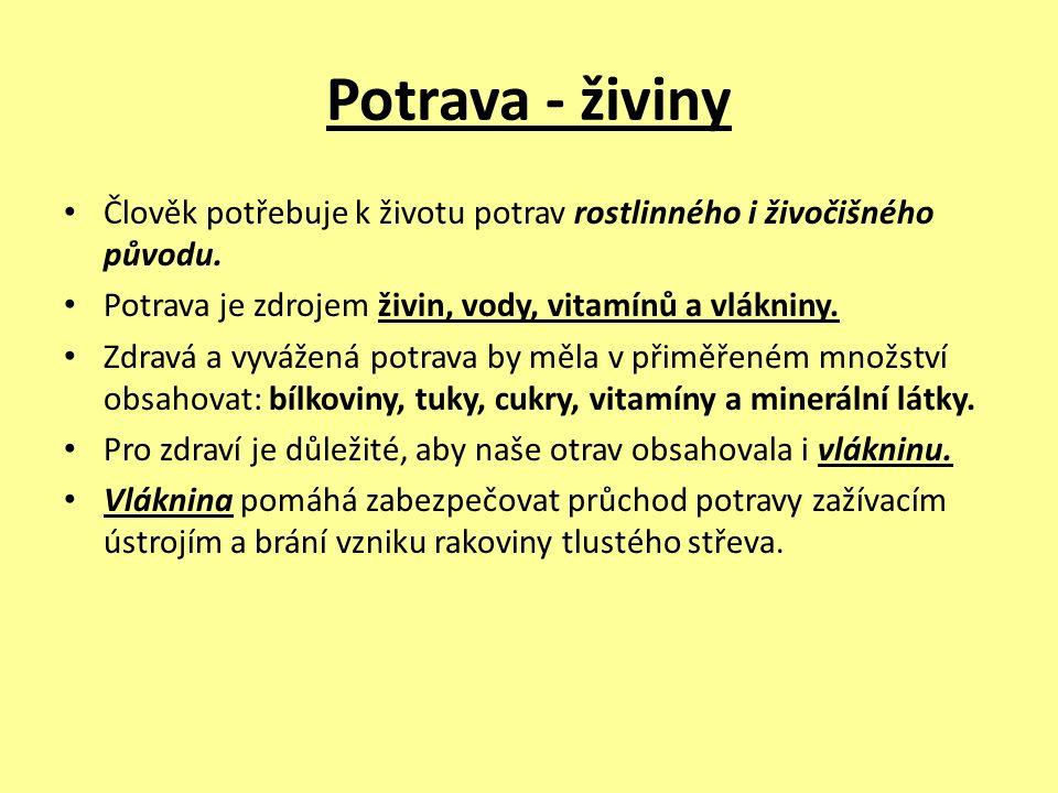 Potrava - živiny Člověk potřebuje k životu potrav rostlinného i živočišného původu. Potrava je zdrojem živin, vody, vitamínů a vlákniny. Zdravá a vyvá