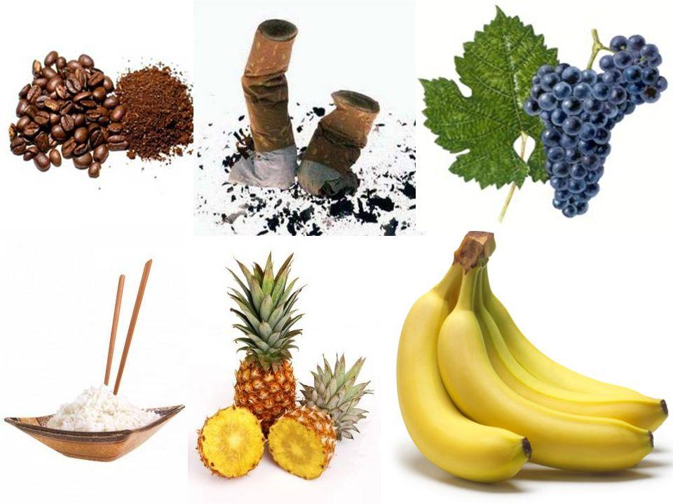 Zemědělství Sklizeň: Káva Tabák Vinná réva Banány Ananasy Rýže… Sklizeň: Káva Tabák Vinná réva Banány Ananasy Rýže…