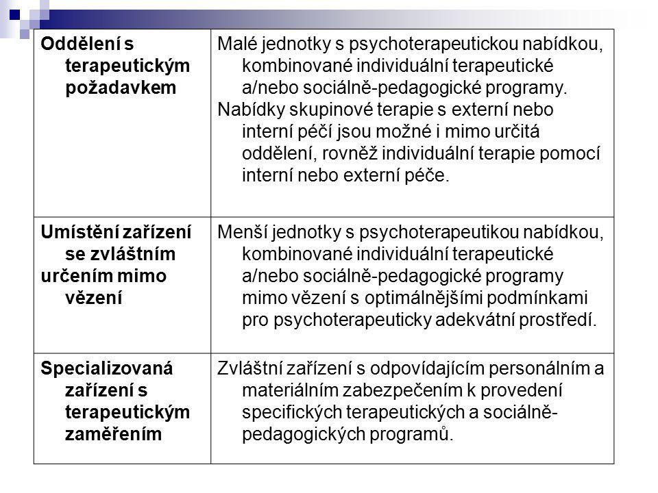 Oddělení s terapeutickým požadavkem Malé jednotky s psychoterapeutickou nabídkou, kombinované individuální terapeutické a/nebo sociálně-pedagogické programy.