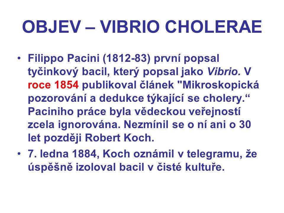 OBJEV – VIBRIO CHOLERAE Filippo Pacini (1812-83) první popsal tyčinkový bacil, který popsal jako Vibrio.