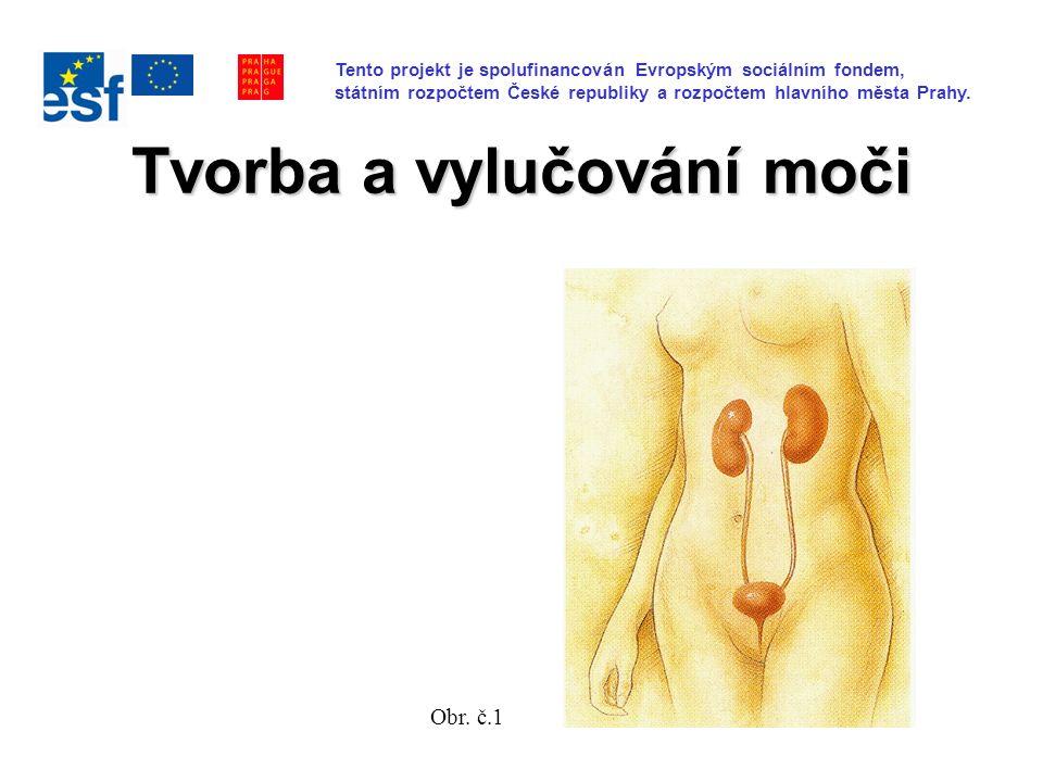 Tvorba a vylučování moči Obr. č.1 Tento projekt je spolufinancován Evropským sociálním fondem, státním rozpočtem České republiky a rozpočtem hlavního