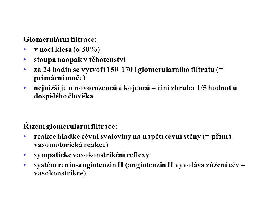 Glomerulární filtrace: v noci klesá (o 30%) stoupá naopak v těhotenství za 24 hodin se vytvoří 150-170 l glomerulárního filtrátu (= primární moče) nejnižší je u novorozenců a kojenců – činí zhruba 1/5 hodnot u dospělého člověka Řízení glomerulární filtrace: reakce hladké cévní svaloviny na napětí cévní stěny (= přímá vasomotorická reakce) sympatické vasokonstrikční reflexy systém renin-angiotenzin II (angiotenzin II vyvolává zúžení cév = vasokonstrikce)