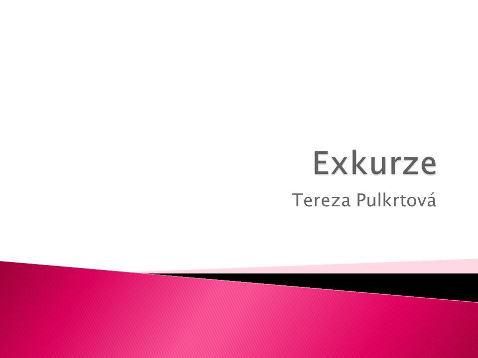 Tereza Pulkrtová