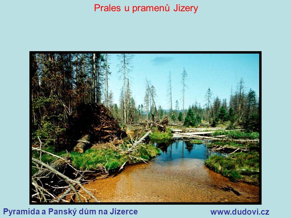 Pyramida a Panský dům na Jizerce www.dudovi.cz Prales u pramenů Jizery