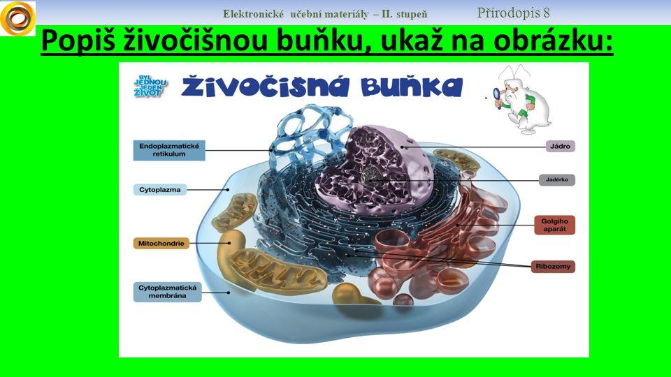 Popiš živočišnou buňku, ukaž na obrázku: