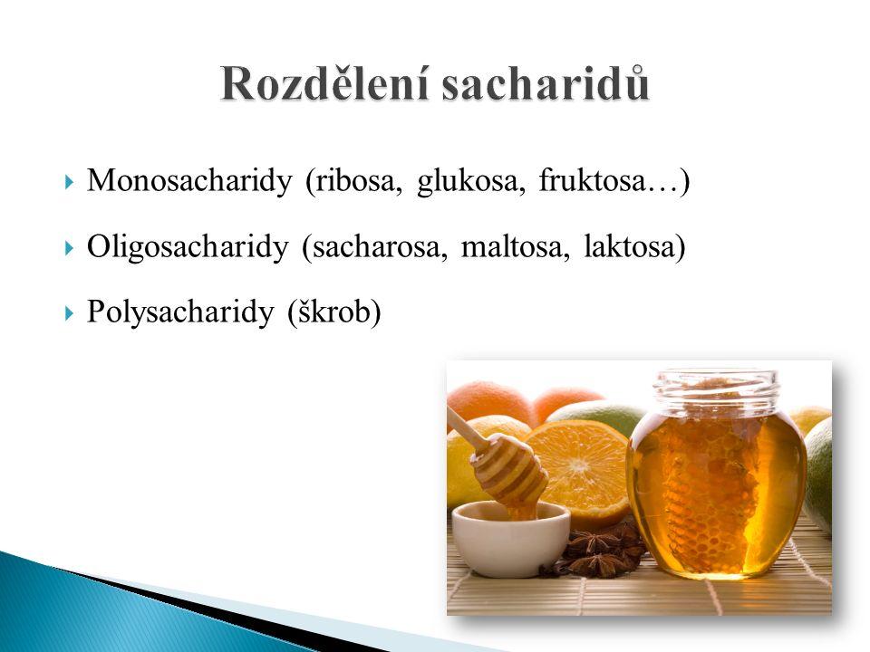  Monosacharidy (ribosa, glukosa, fruktosa…)  Oligosacharidy (sacharosa, maltosa, laktosa)  Polysacharidy (škrob)