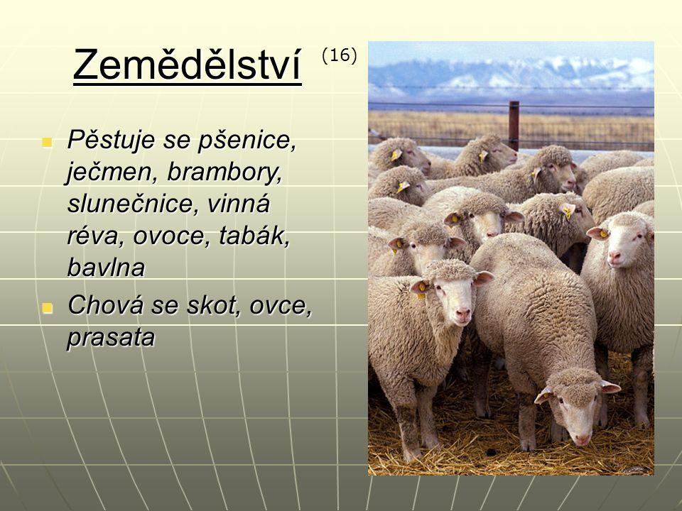 Zemědělství Pěstuje se pšenice, ječmen, brambory, slunečnice, vinná réva, ovoce, tabák, bavlna Pěstuje se pšenice, ječmen, brambory, slunečnice, vinná réva, ovoce, tabák, bavlna Chová se skot, ovce, prasata Chová se skot, ovce, prasata (16)