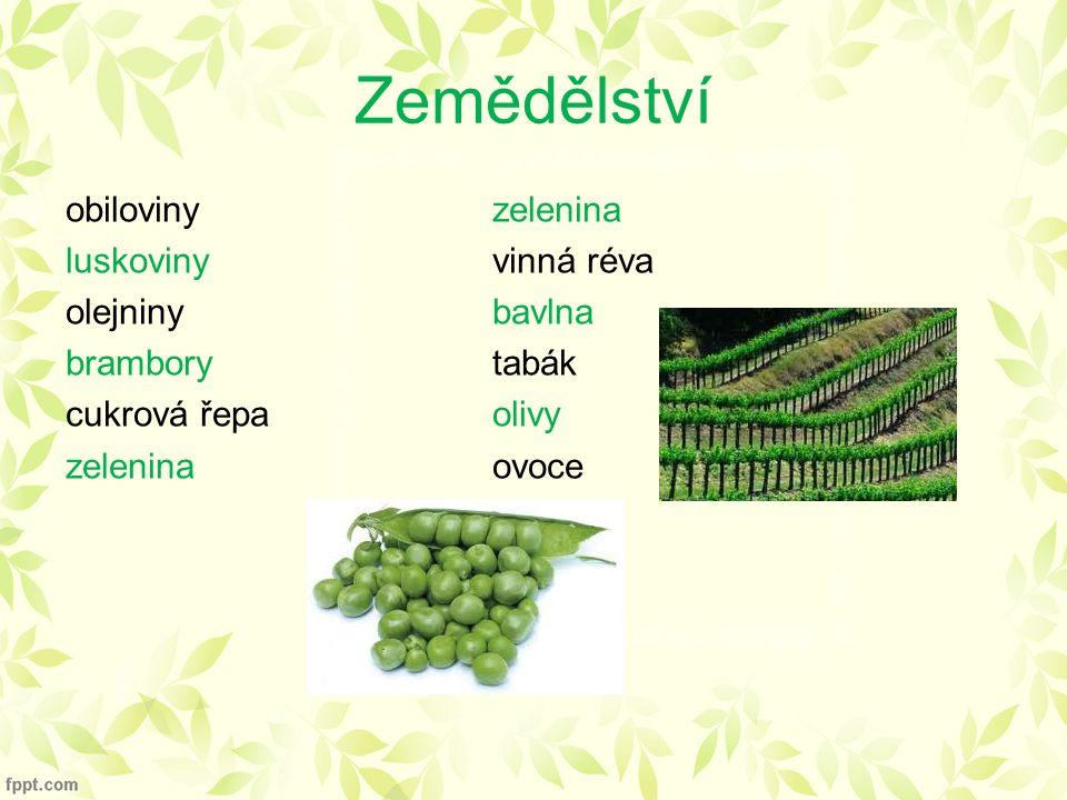 Zemědělství obilovinyzelenina luskovinyvinná réva olejninybavlna bramborytabák cukrová řepaolivy zeleninaovoce